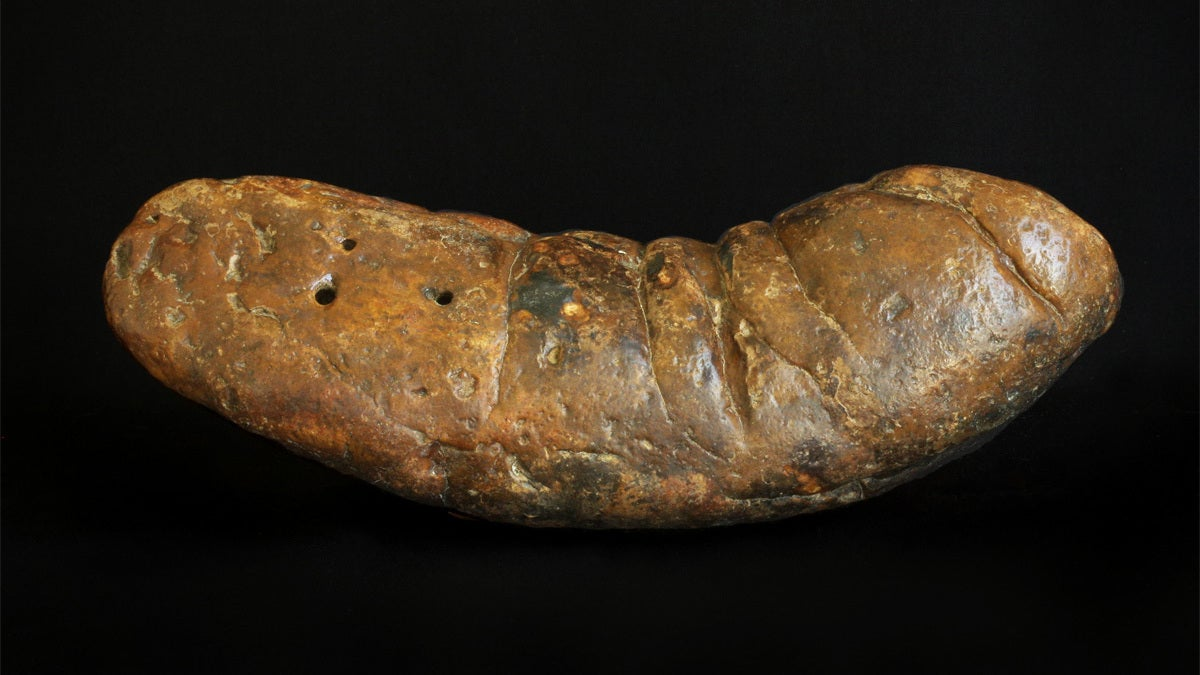 Particle Accelerators Are Changing The Way We Look At Ancient Turds