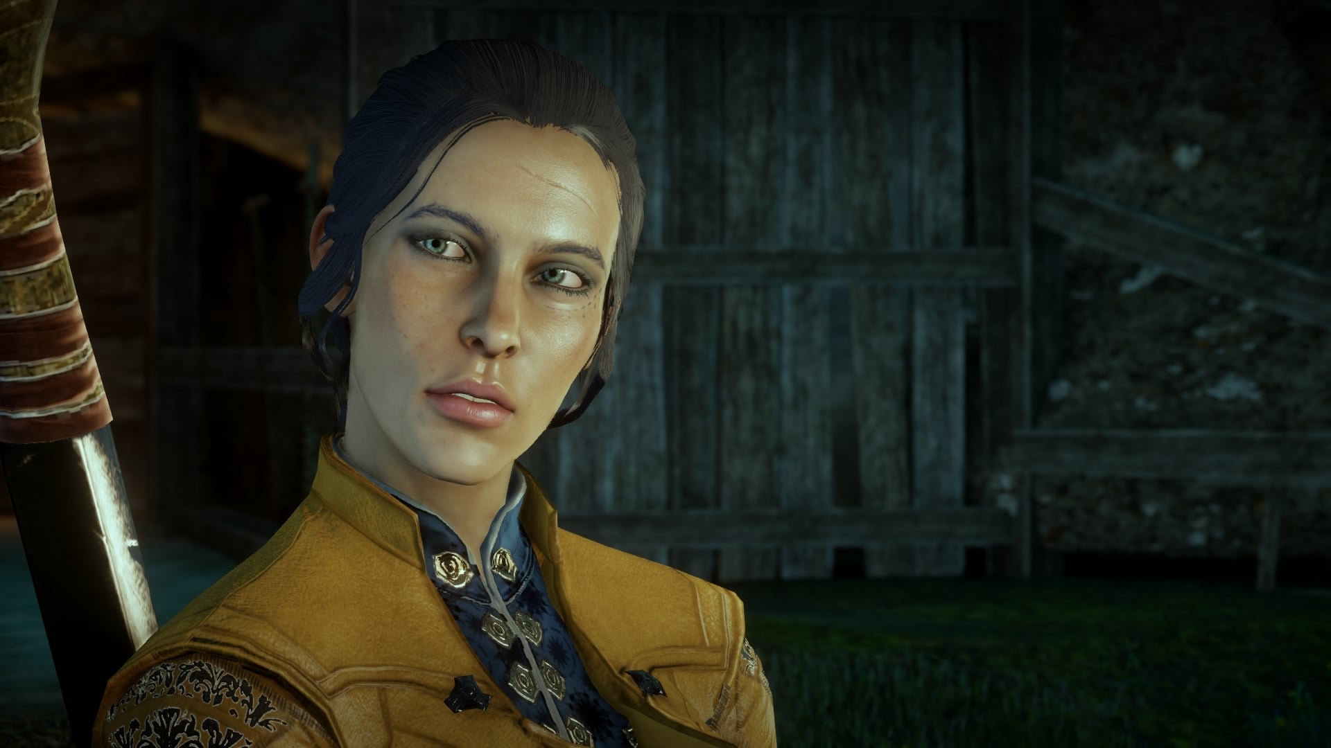 Dragon age profile not updating