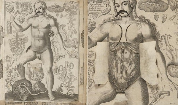 Columbia Just Digitised a Bestselling Anatomy Flipbook From the 1600s