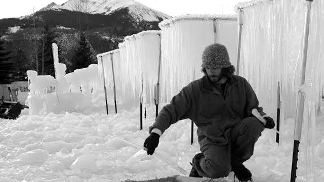 Meet An Icicle Farmer