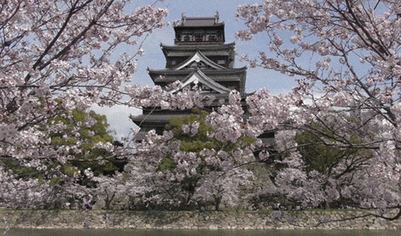 Japanese Castles Look Even Better with Cherry Blossoms