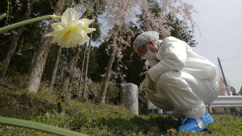 Fukushima Farmers Are Using Soil Made From Polyester