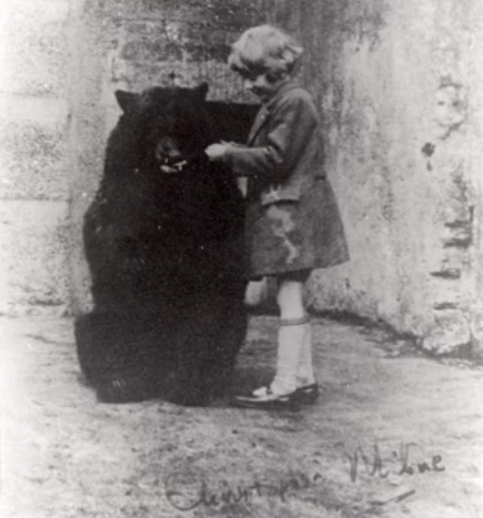 Winnie the Pooh was based on a real bear that participated in WWI