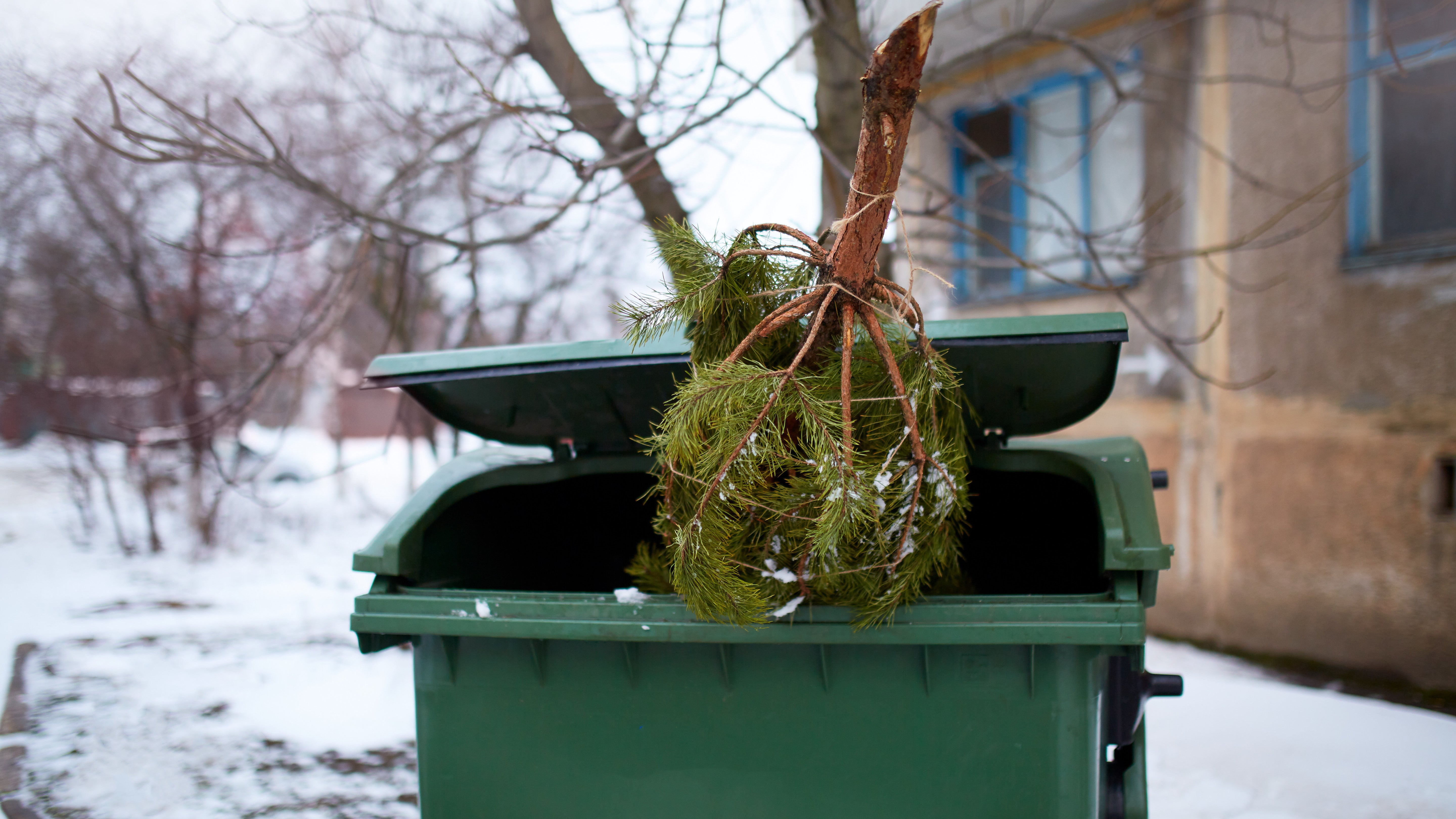 How To Recycle All Of Your Holiday Garbage