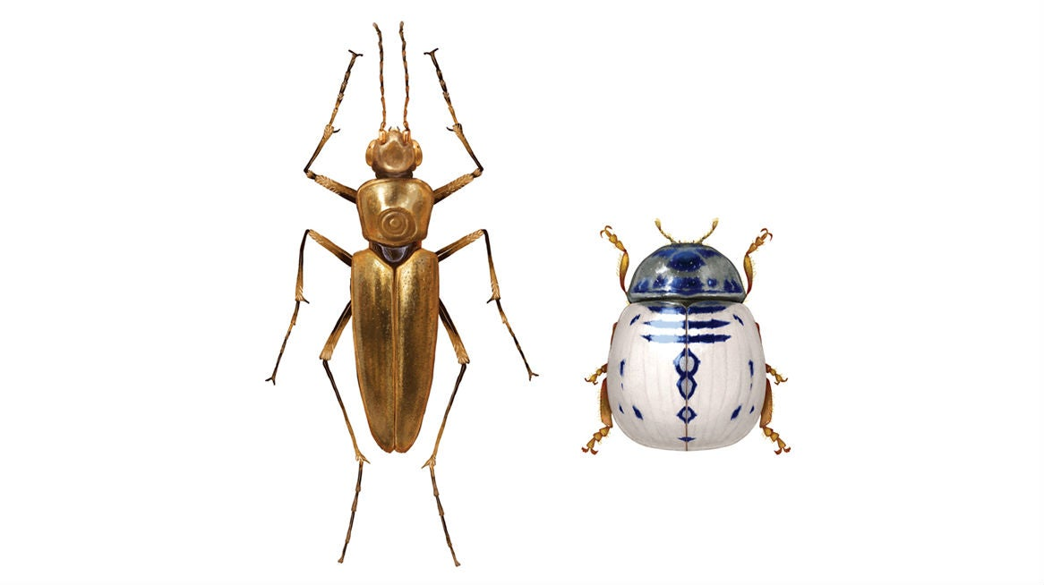 These Star Wars Bugs Will Blow Your Mind And Maybe Gross You Out