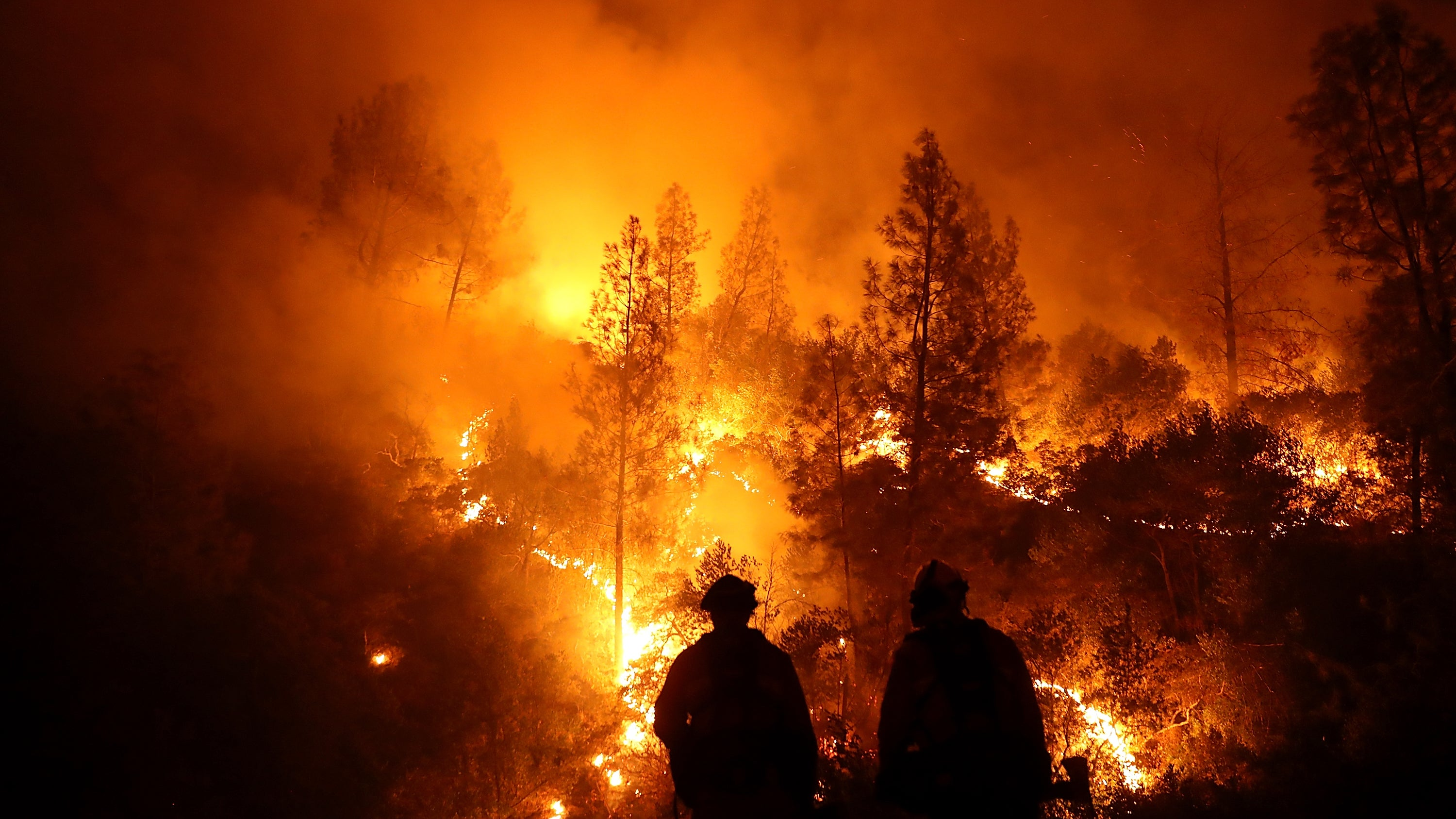 The Largest Bushfire InCalifornia's History Is Finally Out
