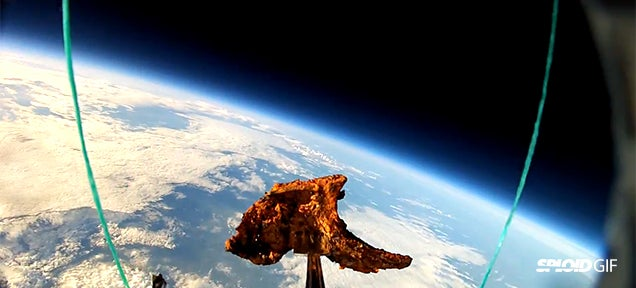 Watch these humans launch a lamb chop to space because why not
