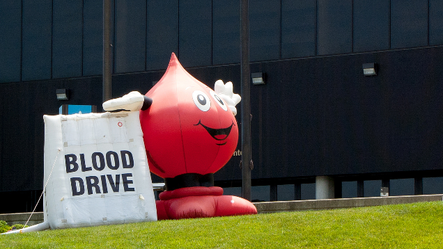 When to Donate Blood so You Don't Screw up Your Workout Routine