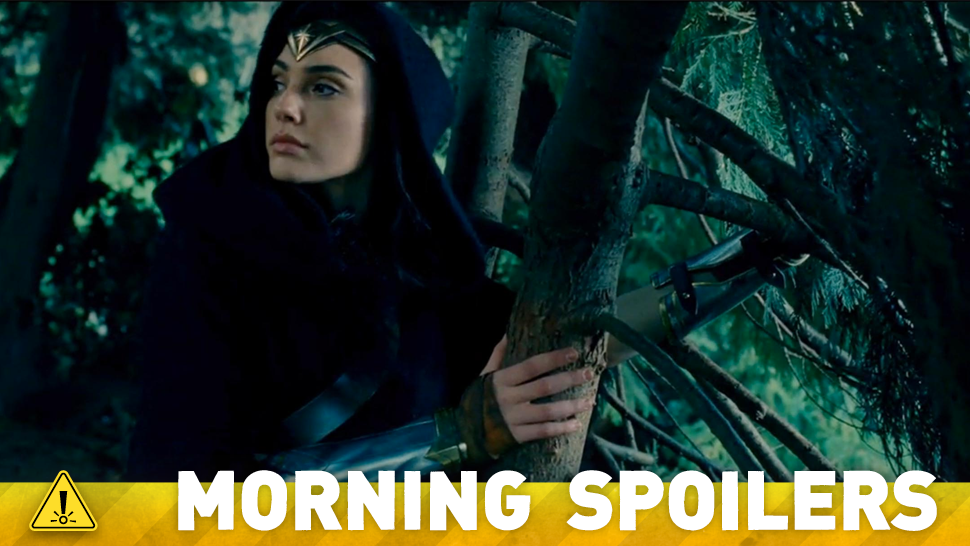 Could the Wonder Woman Film Turn Into a Big Batman v Superman Reunion?