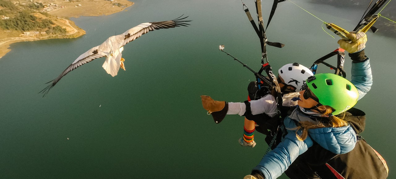 Parahawking: An Actual Sport That Mixes Paragliding And GIANT BIRDS