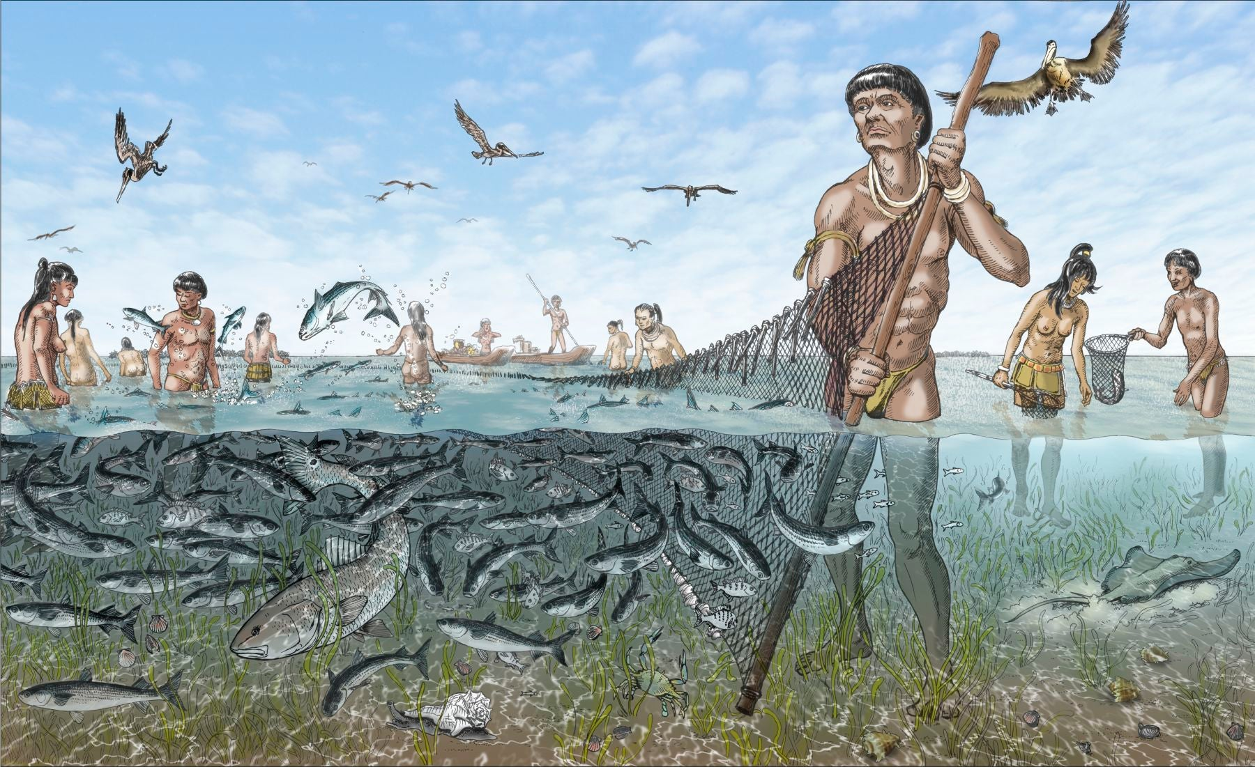 Florida's Ancient Calusa Kingdom Was Powered By Ingenious Fish Corrals
