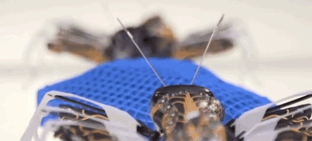 These 3D-Printed Ants Could Be the Factory Workers of the Future