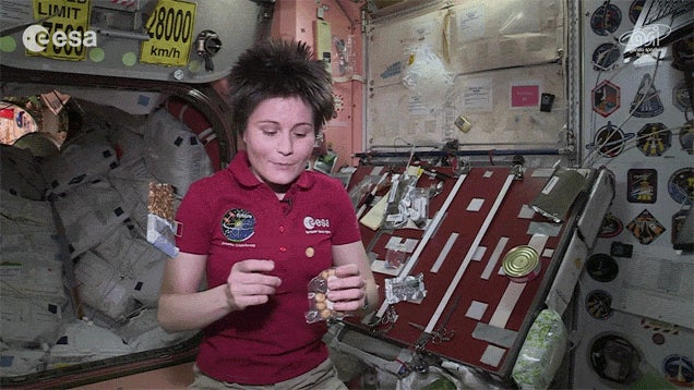 This Is What Astronauts Snack on Between Meals