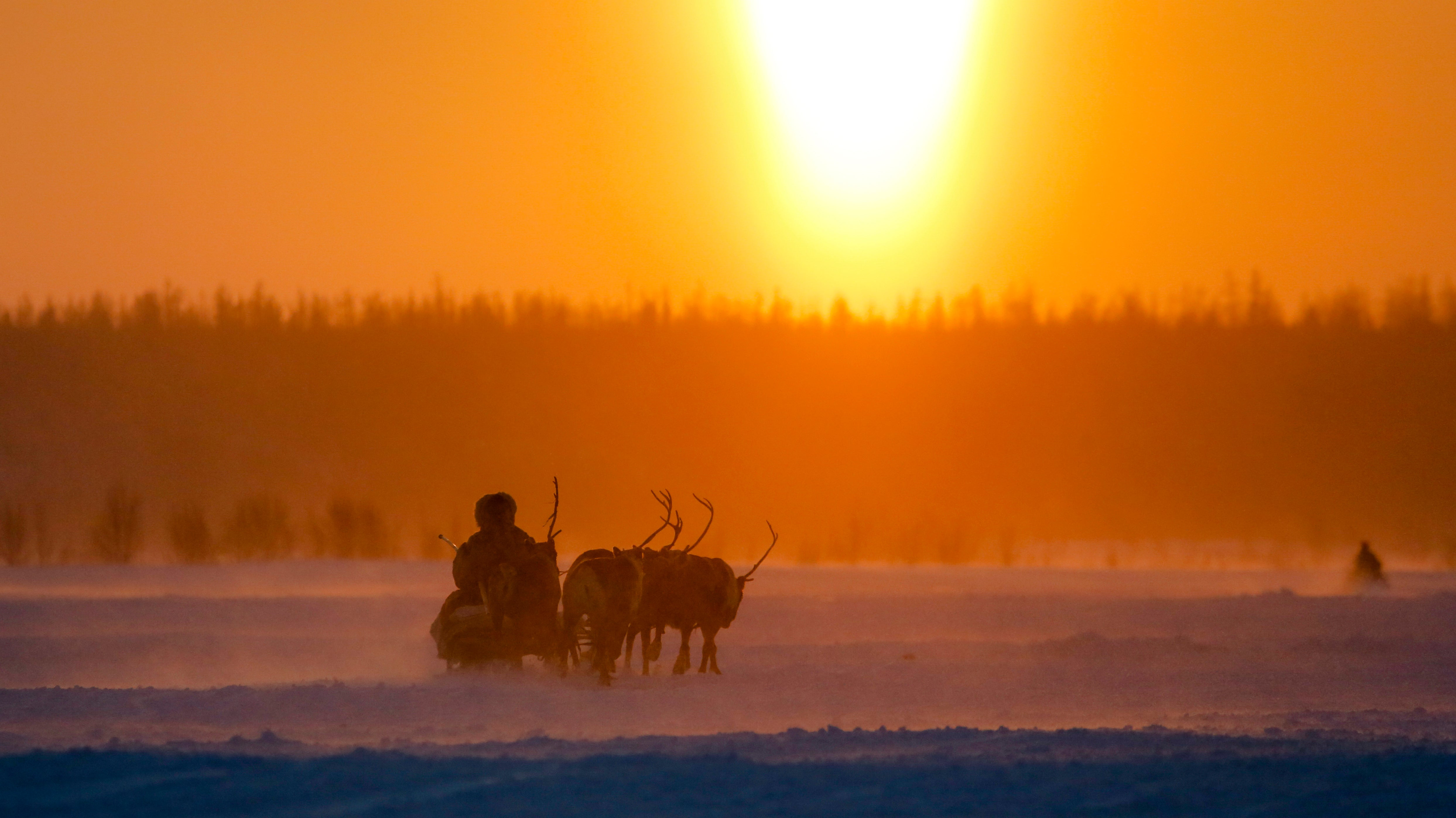 The Horrifying Reason Siberia Is Dealing With An Anthrax Outbreak