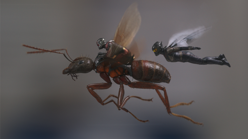 The Reason Why Infinity WarDidn't Tease Ant-Man And The WaspIs Sort Of A Low-Key Ant-Man Burn