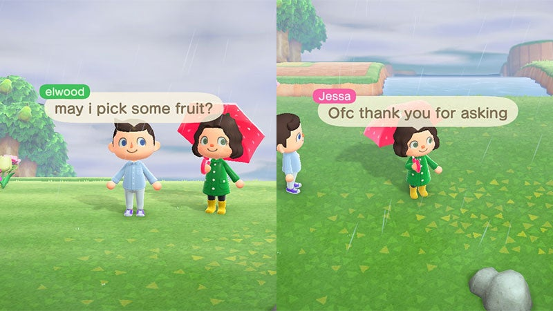 Elijah Wood Visits Girl's Animal Crossing Island, Has Beautiful Manners