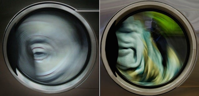 Scary creatures are hiding inside our washing machines