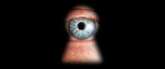 Government Authority Intended to Work on Terrorism Does Everyday Spying