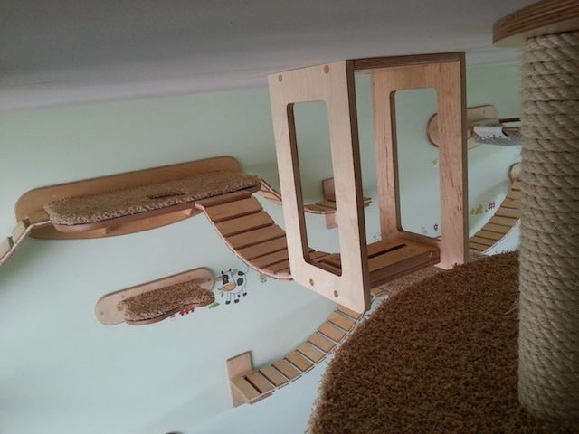 Bored Cats Find Sense of Purpose in Personalised Cat Playgrounds