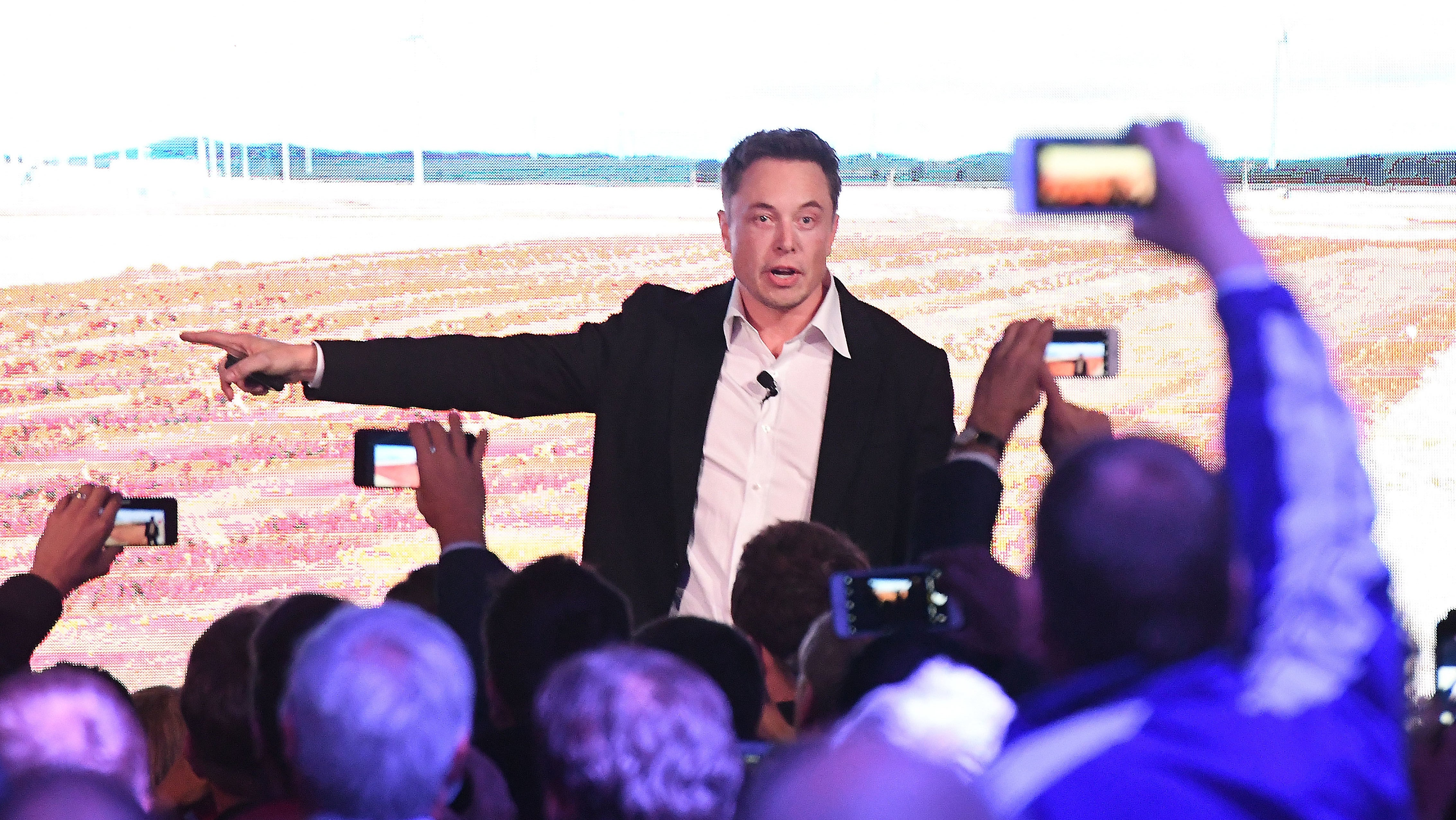 Report: Elon Musk Dragged The Sierra Club Into Helping Him On Twitter And It Didn't End Well