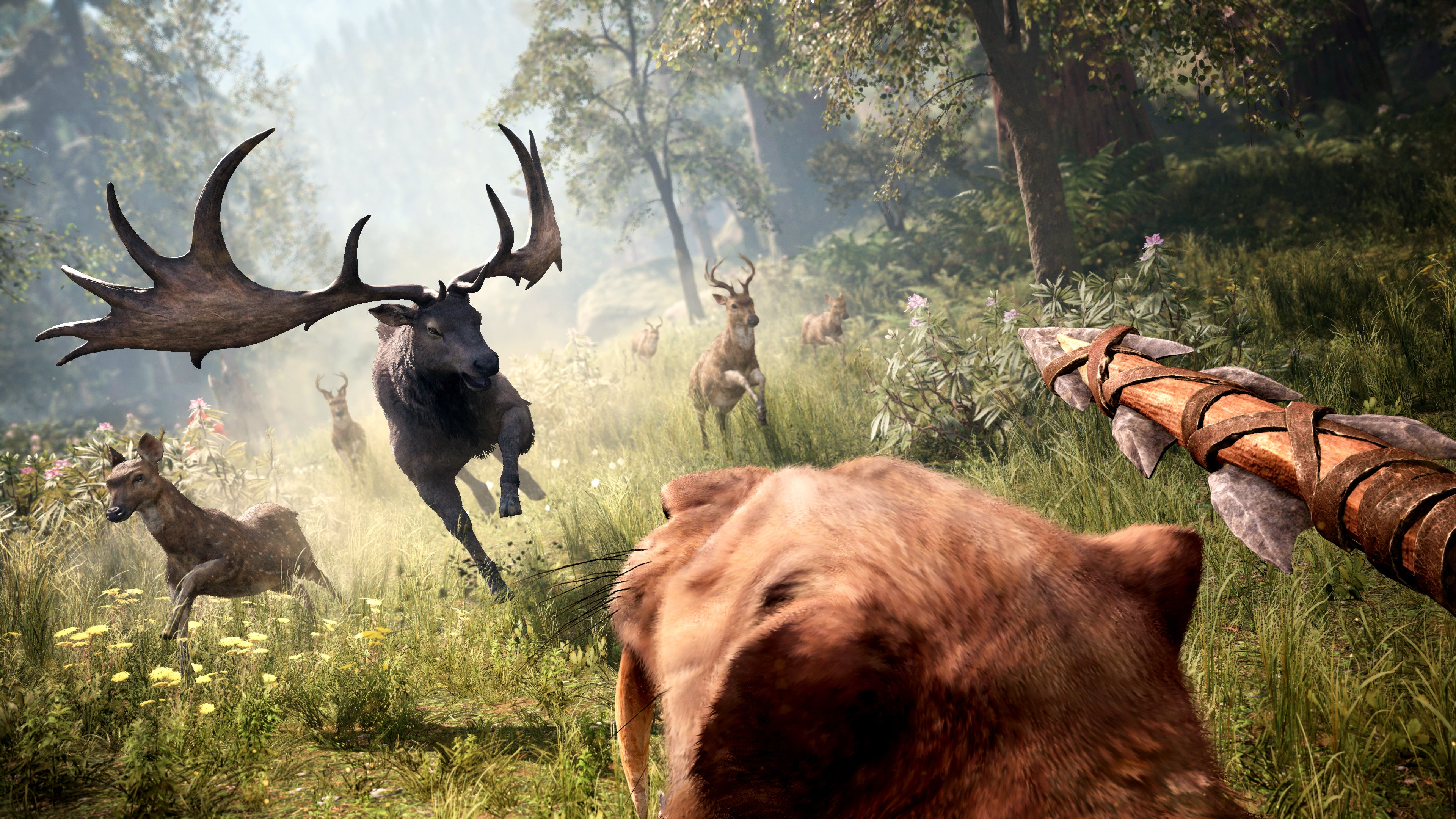 Turns Out Ubisoft Used Far Cry 4's Map To Make Far Cry Primal