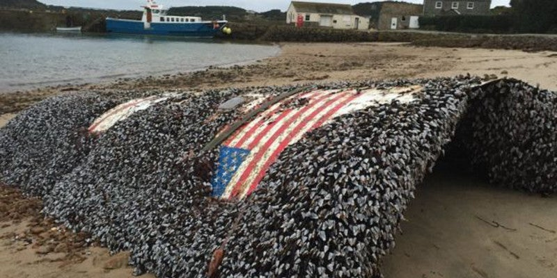 Huge Piece of Debris Likely From SpaceX Summer Explosion Washed Up in UK