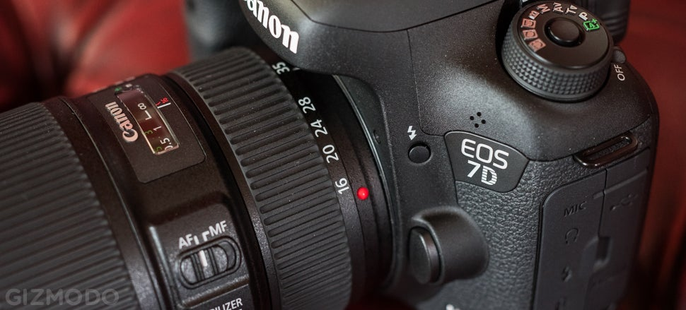 Canon 7D Mark II Review: The Best DSLR For Sports And Wildlife ...