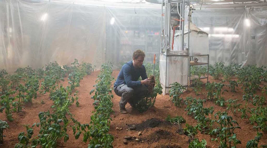 Matt Damon Might Have Been Right About Potatoes On Mars
