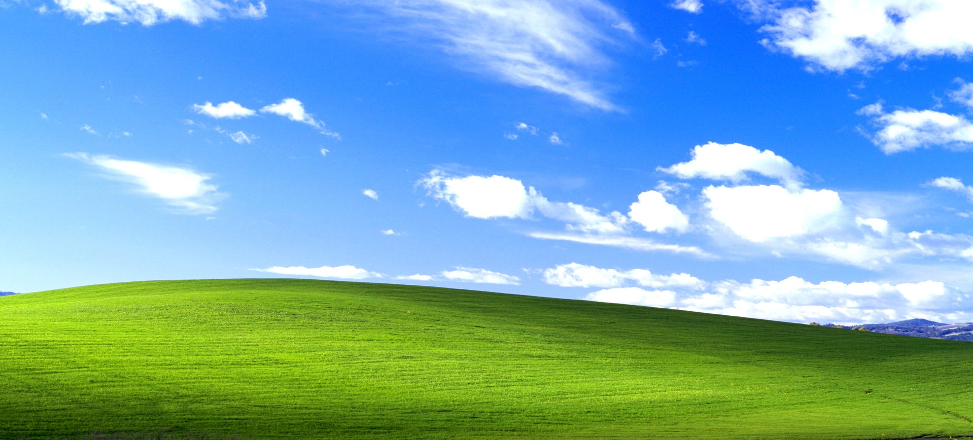 Photographer reveals the secret of the Windows XP desktop image
