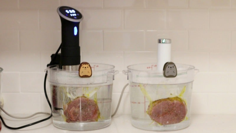 Sous Vide Showdown: The Anova Vs. The Joule