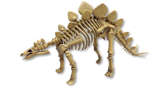 Have Your Own Night at the Museum With Fully Posable Dino Skeletons