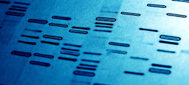 How a New DNA Test Can Distinguish Between Identical Twins