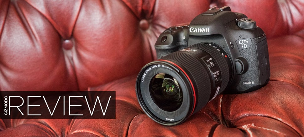 Canon 7D Mark II Review: The Best DSLR For Sports And Wildlife, But That's All