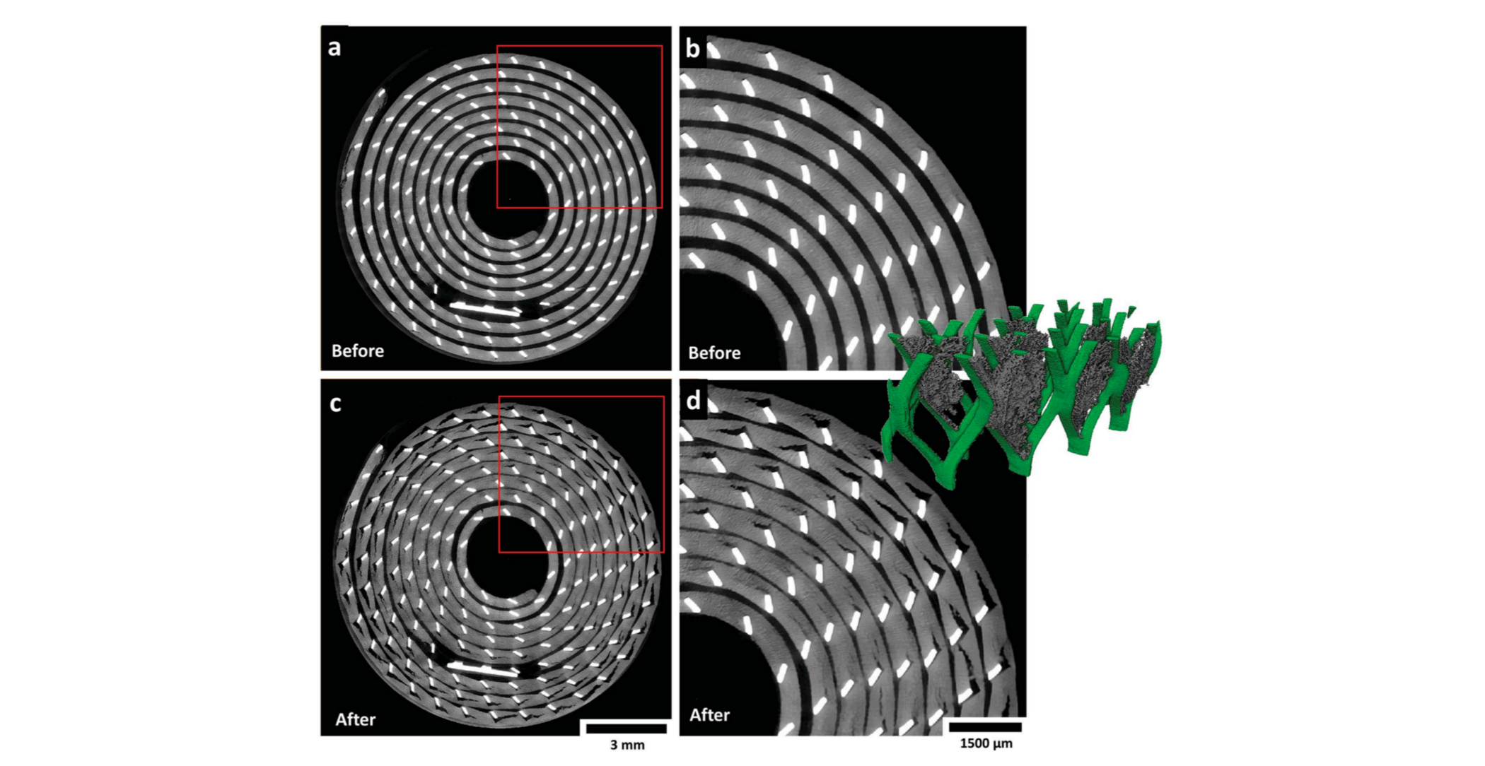 Real-Time 3D Imaging Shows How Disposable Lithium Batteries Degrade