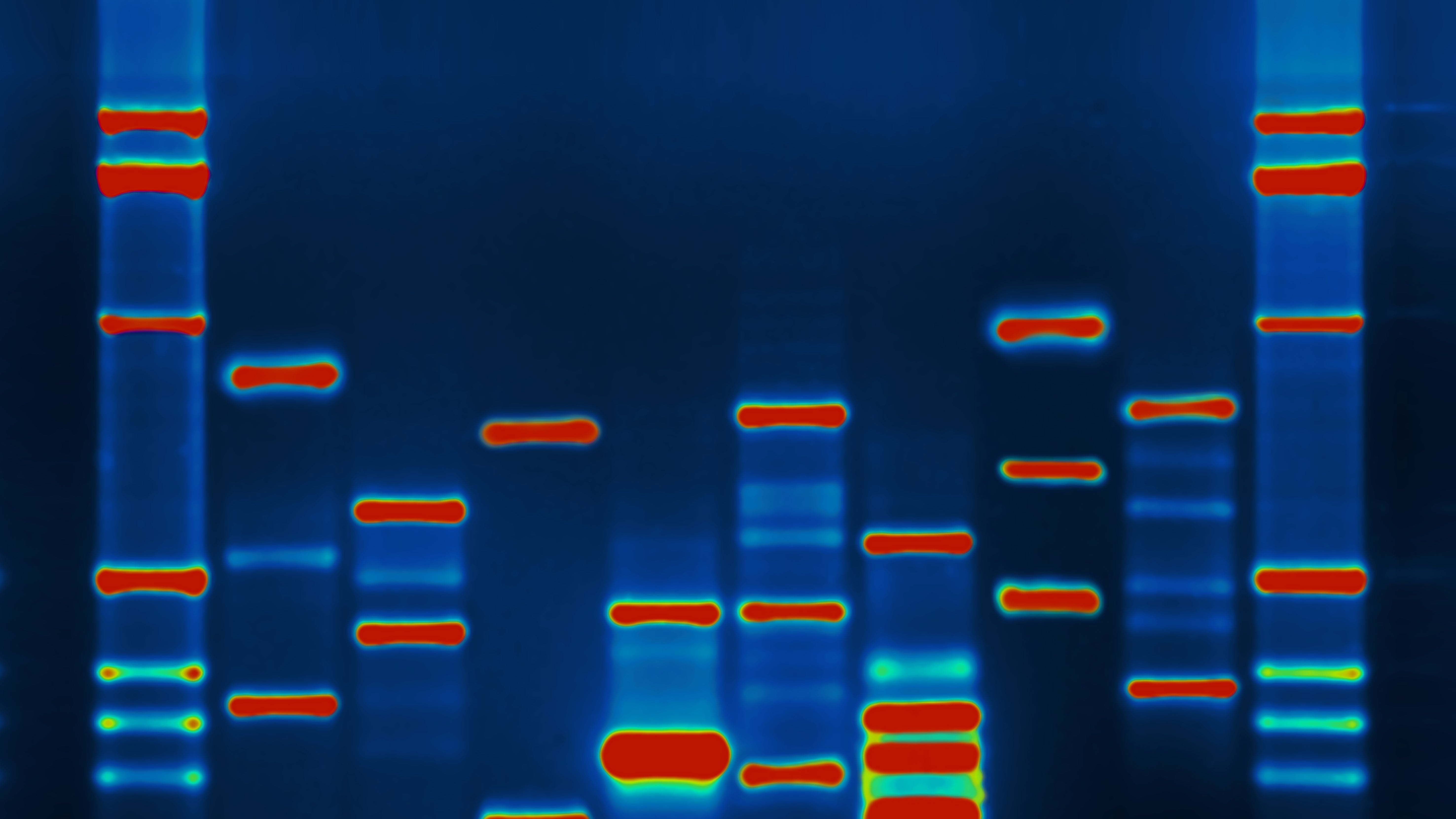 Encryption Technology Could Protect The Privacy Of Your DNA