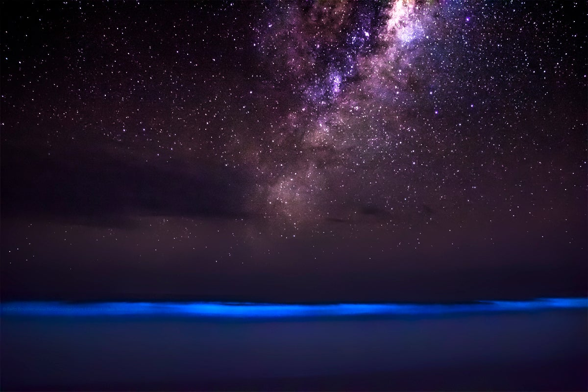 Rare View Of The Ocean Glowing Blue Against The Milky Way