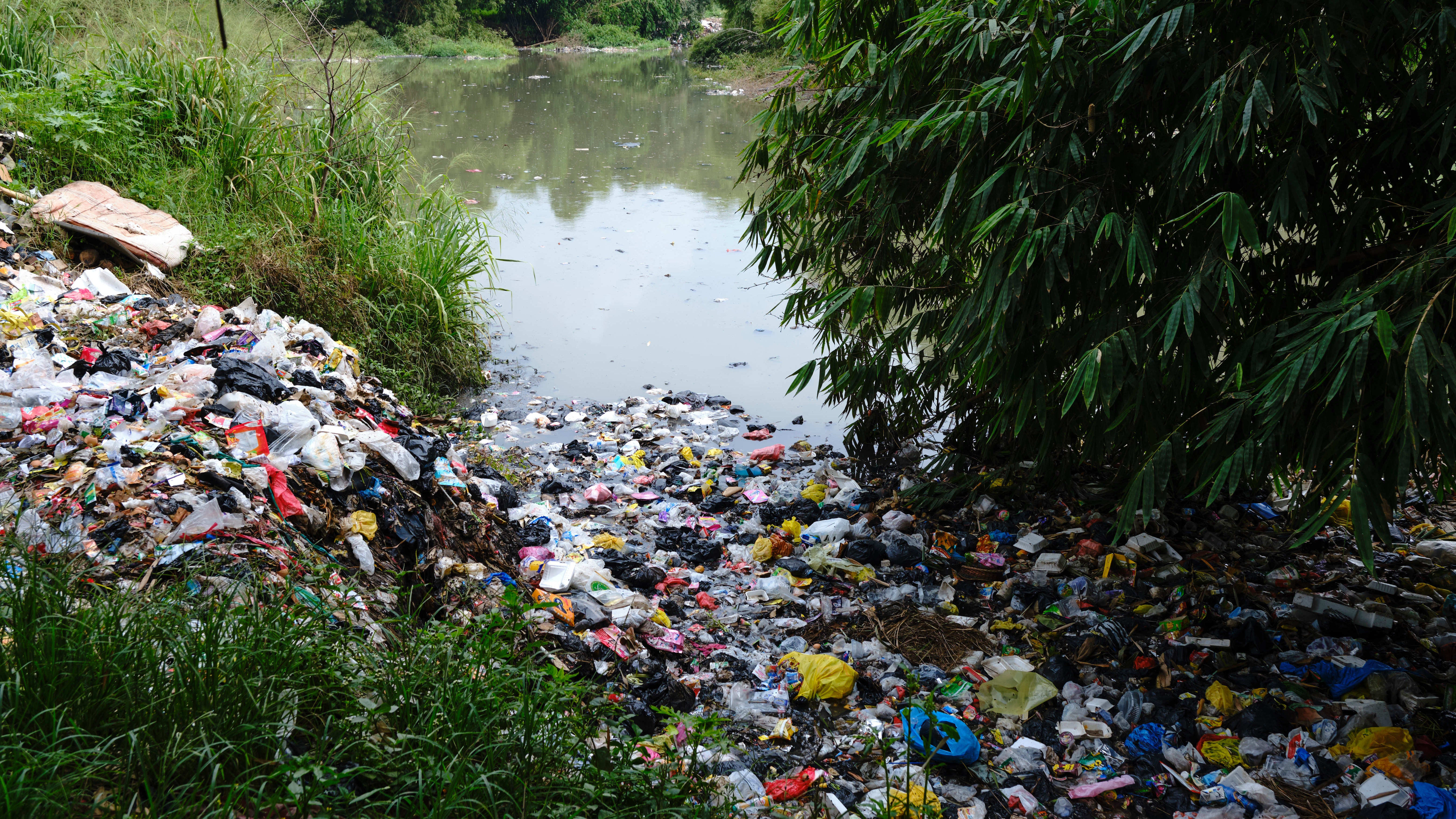 We're Eating A Whole Lot Of Plastic… Uh, Is That Bad?