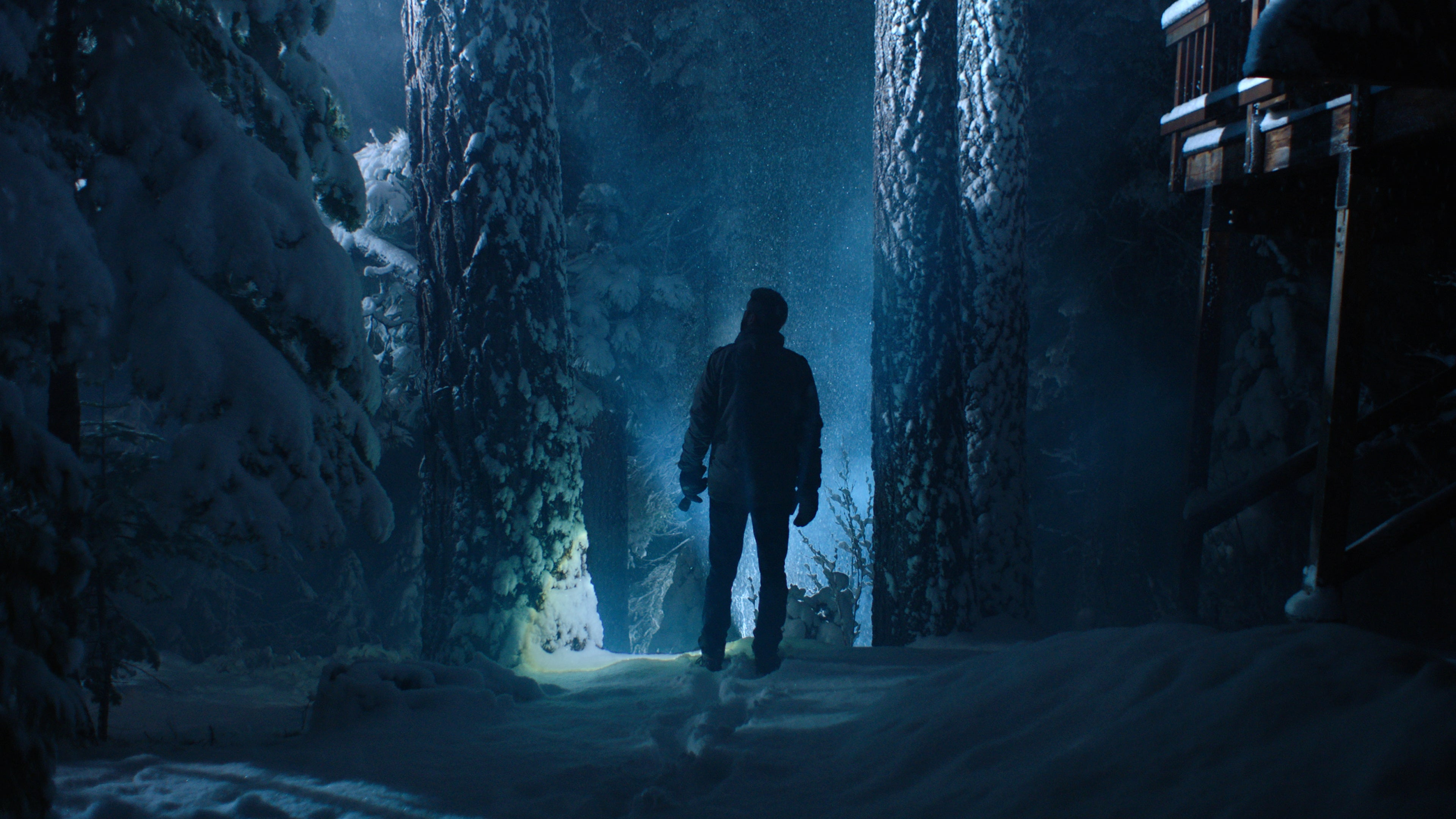 A Horror Icon Elevates The Quirky Killer-In-The-Woods Thriller Dead Night