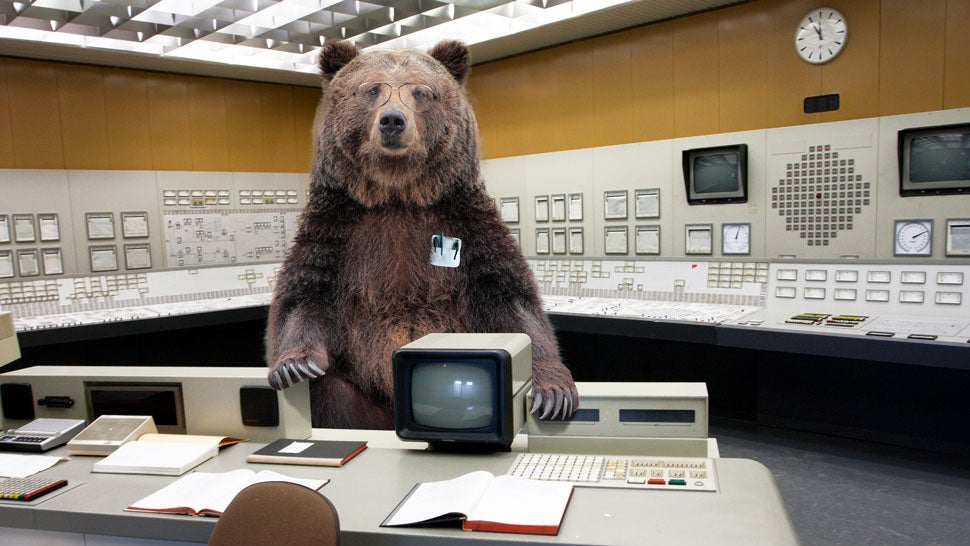 We're in a Technological Arms Race with Bears for Our Food
