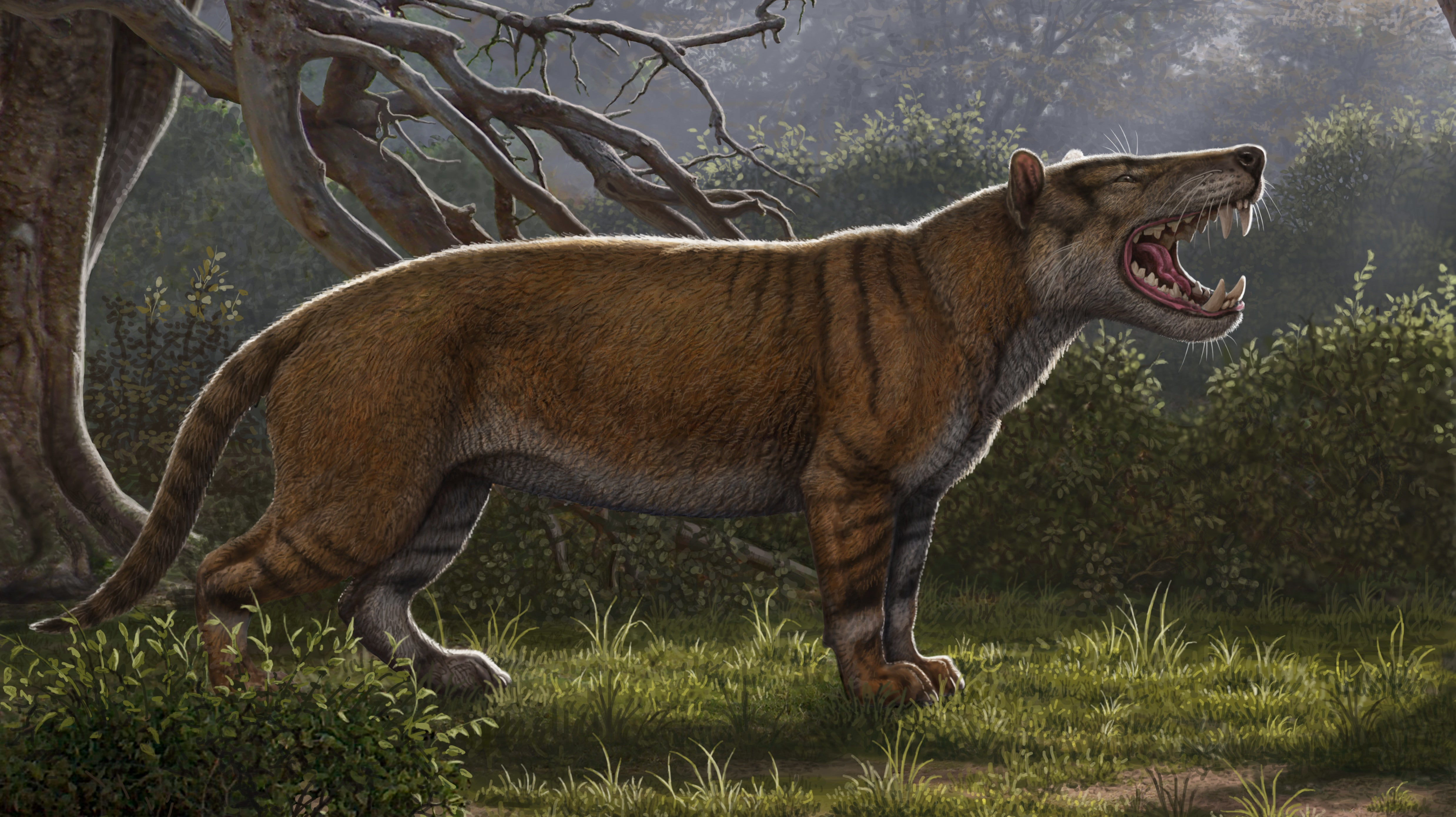 Newly Discovered Ancient Carnivore Was Bigger Than A Polar Bear And Is True Nightmare Fuel