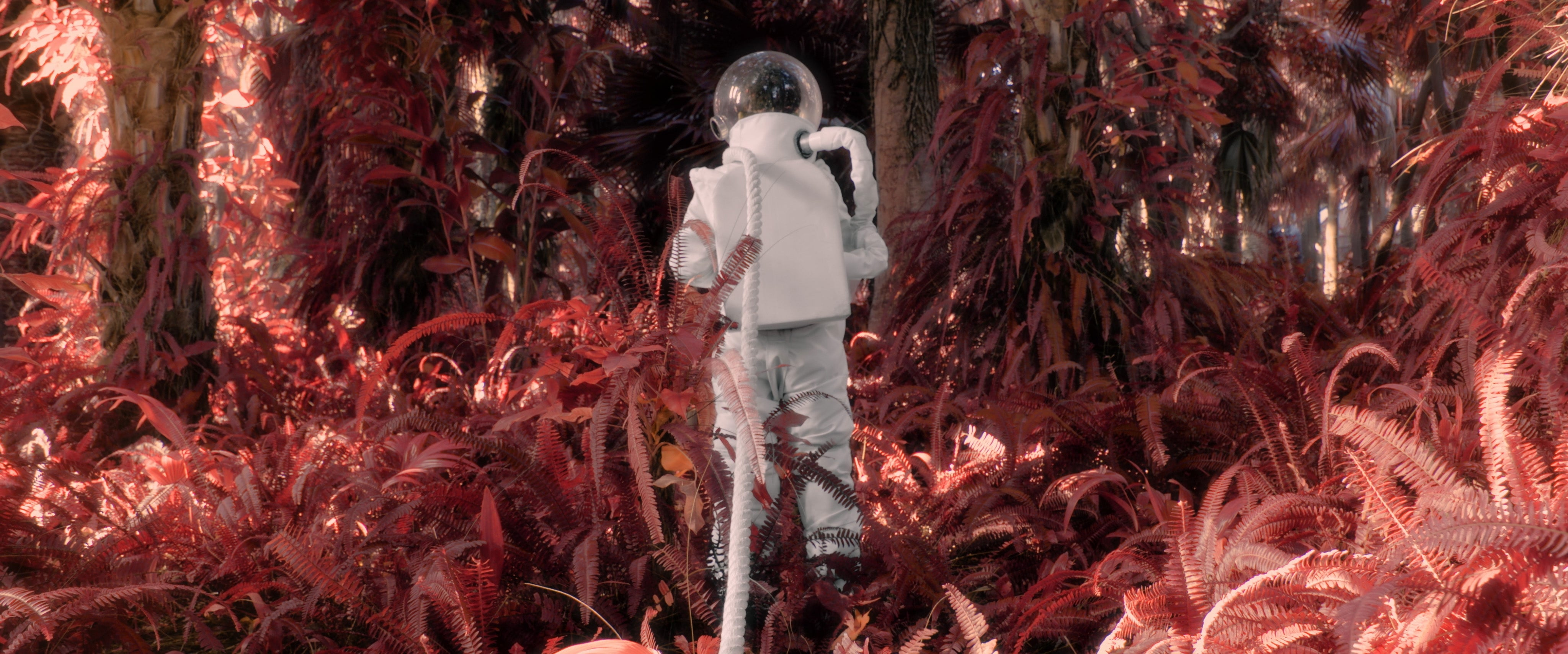 A Young Astronaut Follows His Space-Exploration Dreams In This Whimsical Music Video