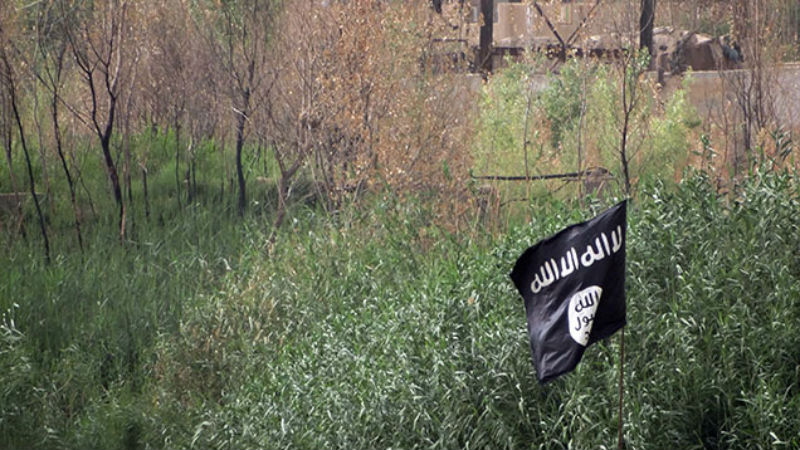 Teen Arrested for Using 57 Twitter Accounts to Recruit for ISIS from His Parents' House