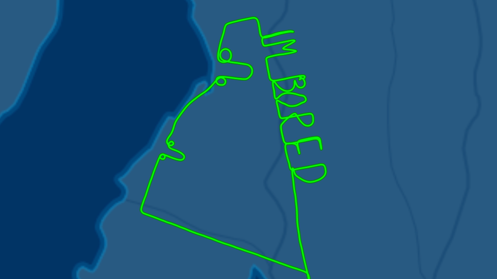 Aussie Pilot Writes 'I'm Bored' And Draws Two Dicks In The Sky