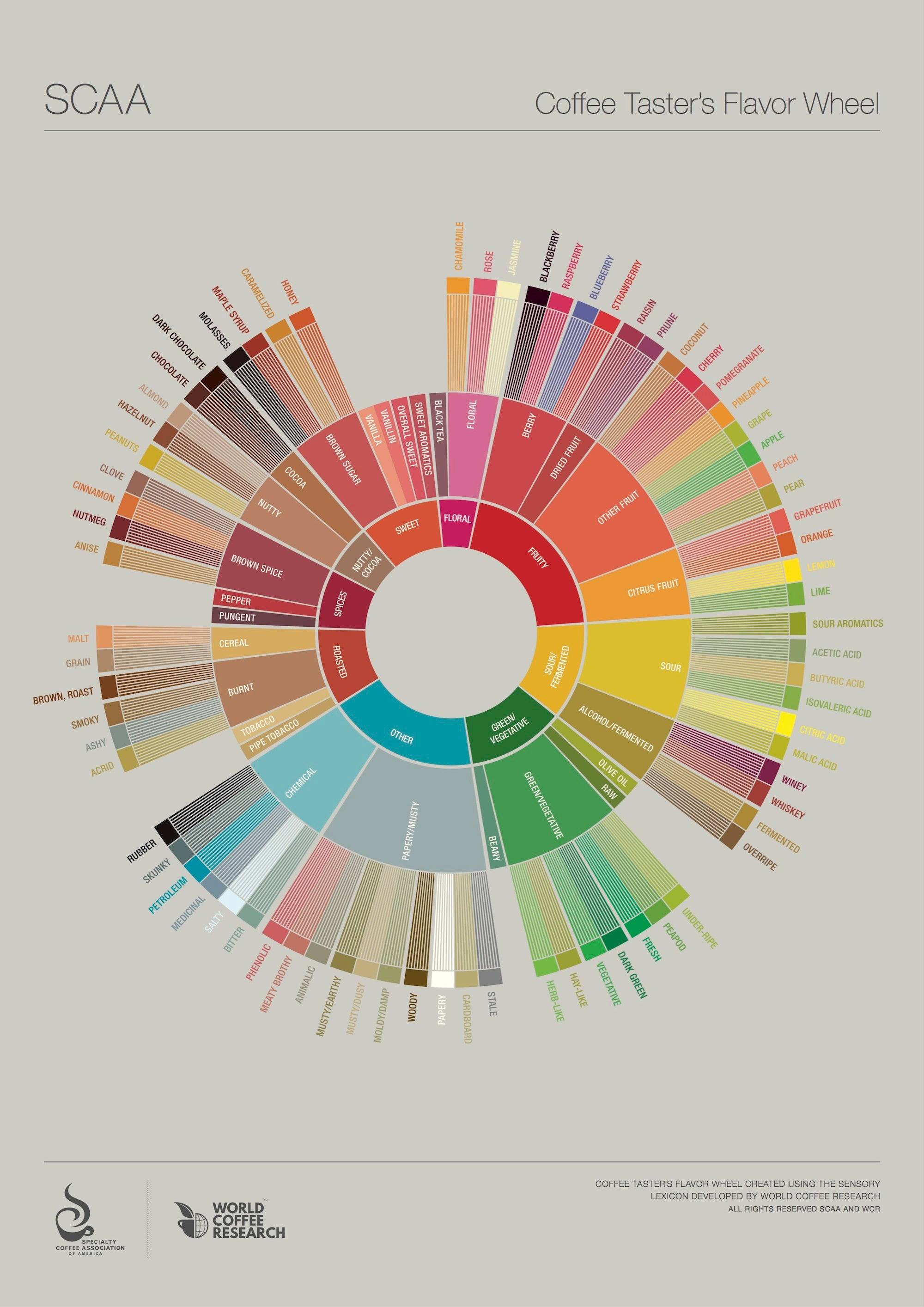 Explore The Flavours In Your Coffee With This Tasting Wheel [Infographic]