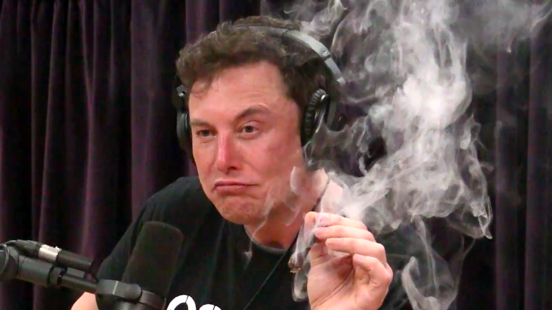 I Wish Elon Wouldn't