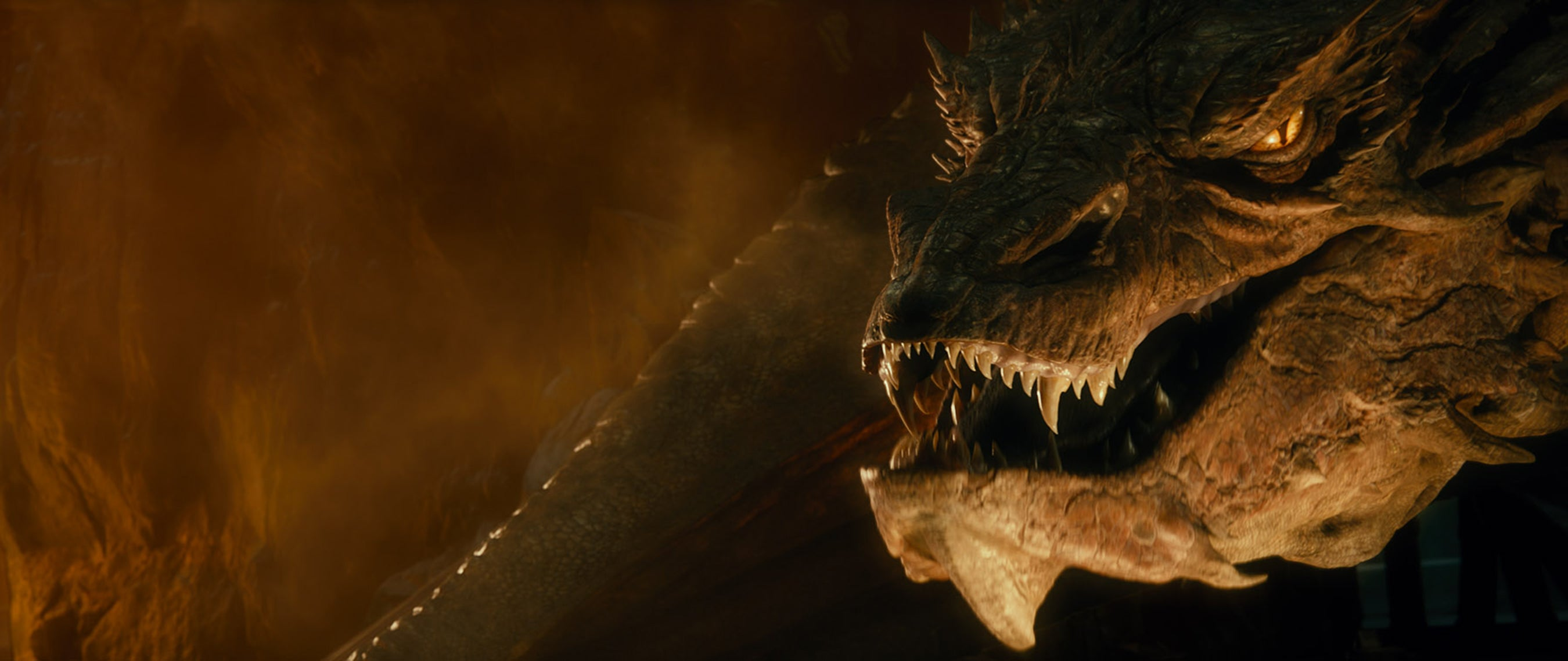 So This Is What It's Like to Get Burnt to a Crisp By Smaug the Dragon