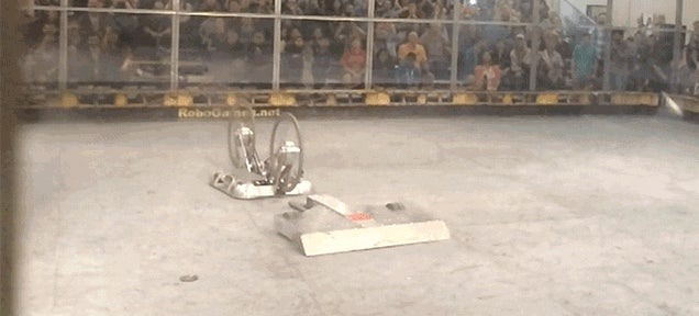 Watch This Fighting Robot Die in Agonizing Slow Motion