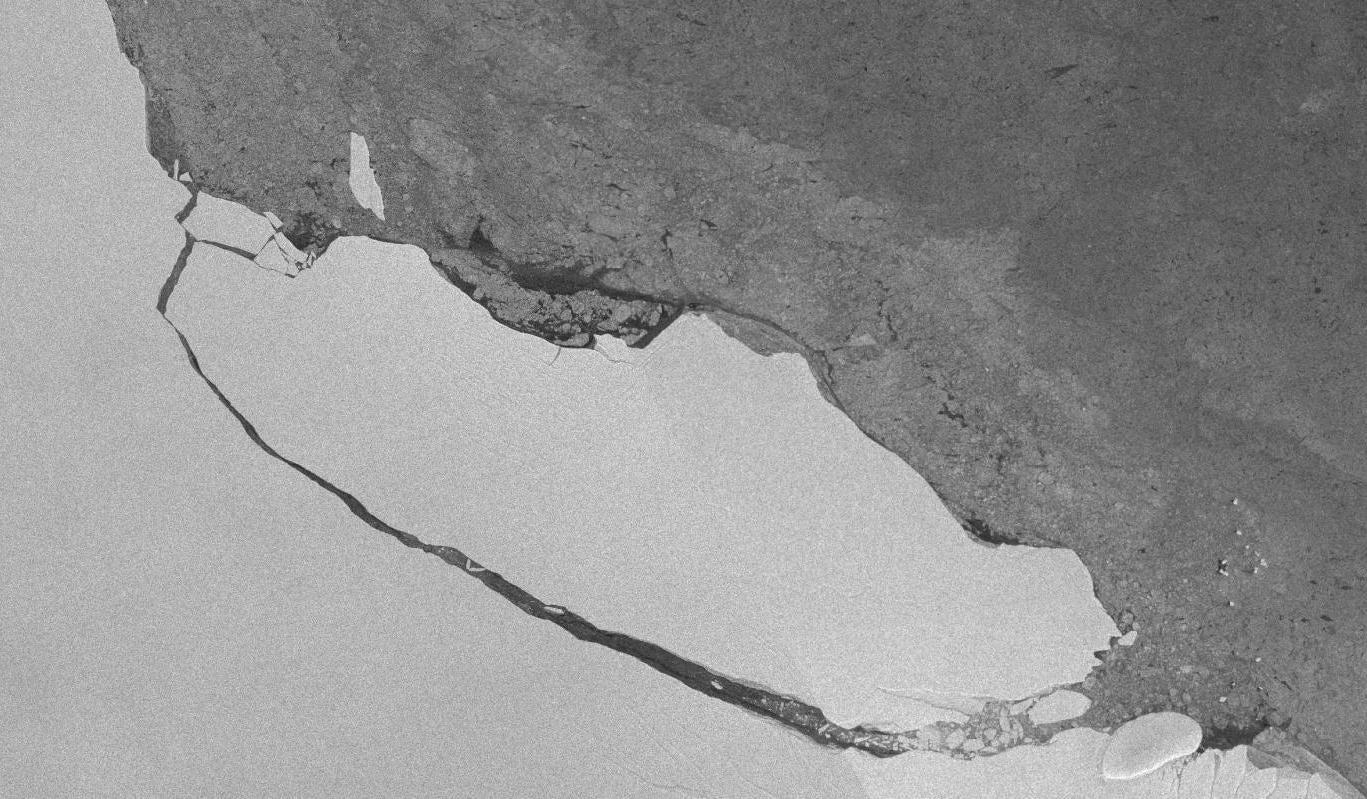 Antarctica's Massive Iceberg Has Become A Major Scientific Experiment