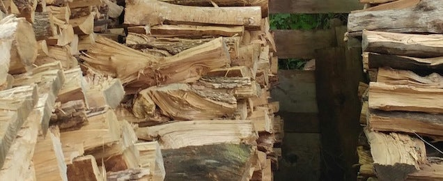 Can You Find The Cat Taking A Nap On This Pile Of Wood?
