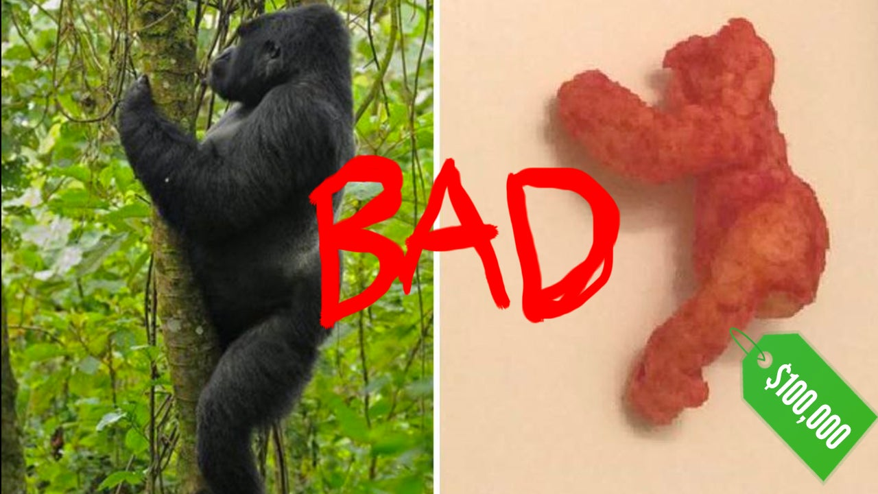 '$100,000' Harambe Cheeto Is Everything Stupid About The Internet